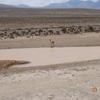 28.09 - 13.10 Pielgrzymka do Peru i Boliwii._4